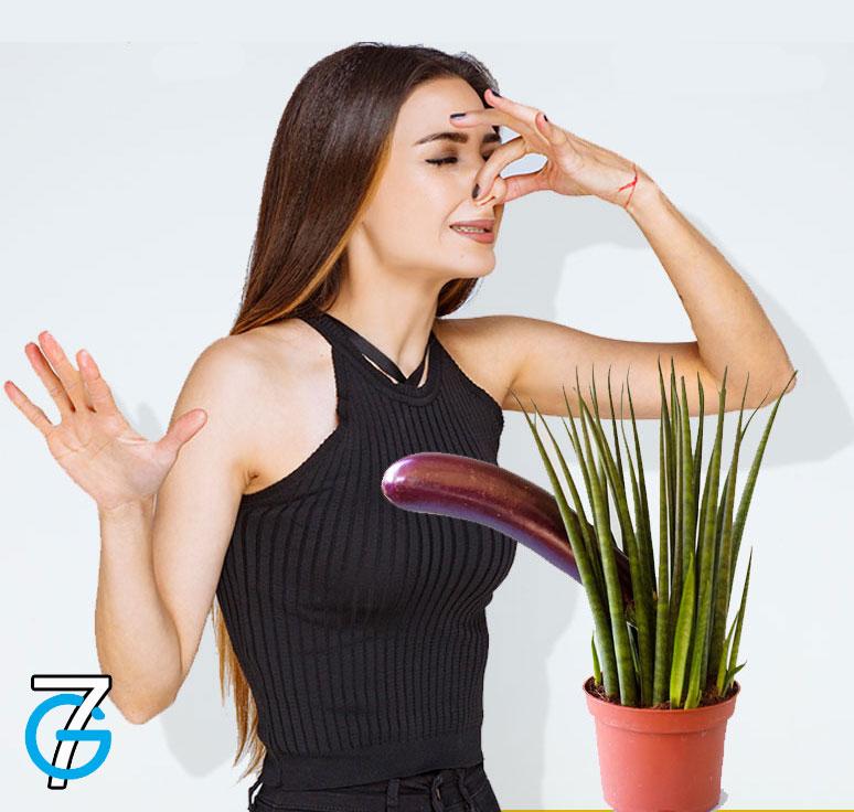 femme-se-pince-le-nez-mauvaise-odeur-penis-plante